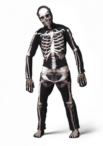 esqueleto 3D adulto